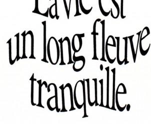 Affiche du film La vie est un long fleuve tranquille de Étienne Chatiliez